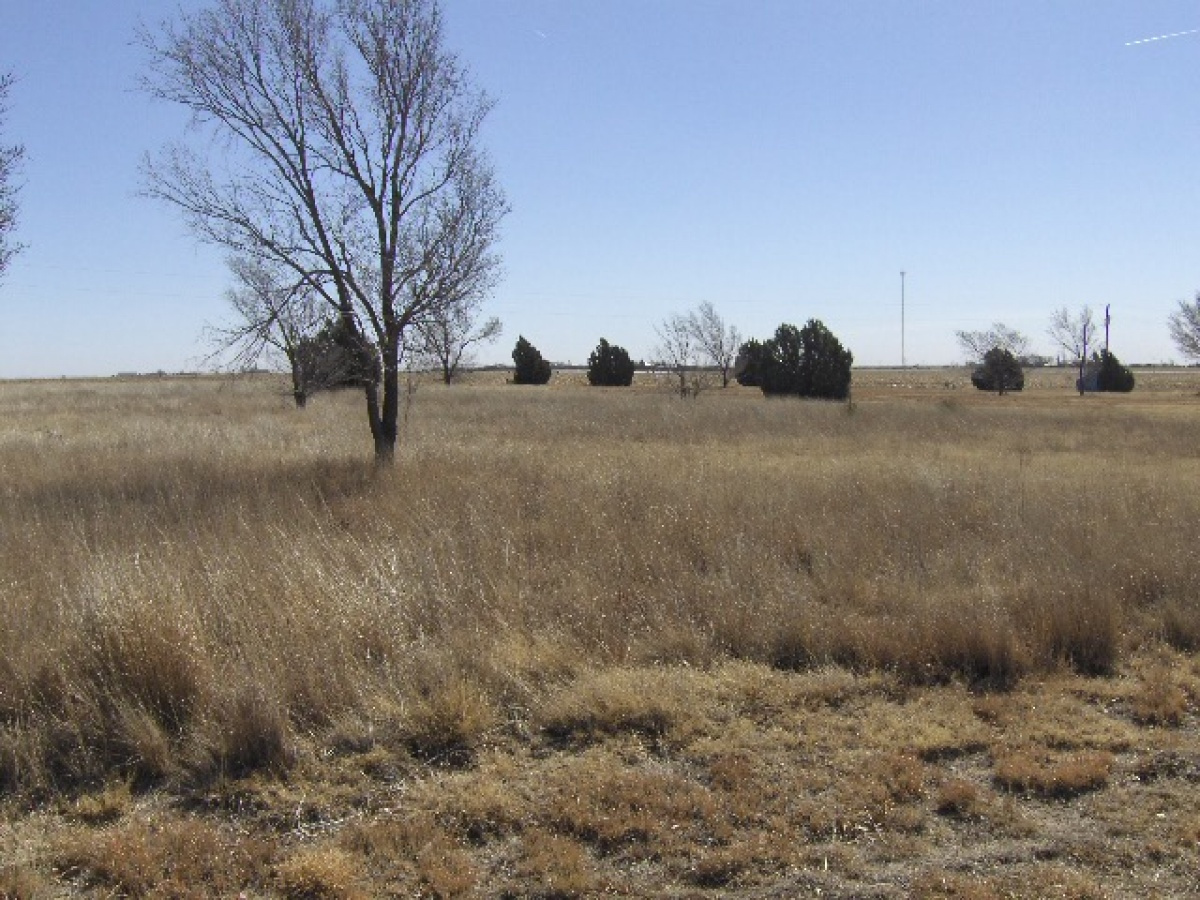 22 Pheasant Run,Dalhart,Hartley,Texas,United States 79022,Undeveloped Property,Pheasant Run,1126