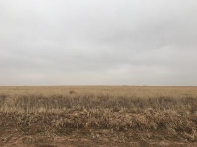 Kerrick,Sherman,Texas,United States 79051,Undeveloped Property,1132
