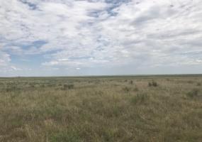 FM 296,Texline,Dallam,Texas,United States 79087,Undeveloped Property,FM 296,1144