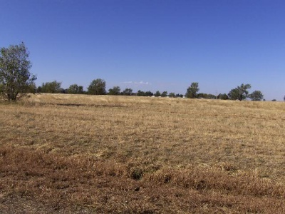 2 Country Club Road,Dalhart,Hartley,Texas,United States 79022,Single Family Home,Country Club Road,1015